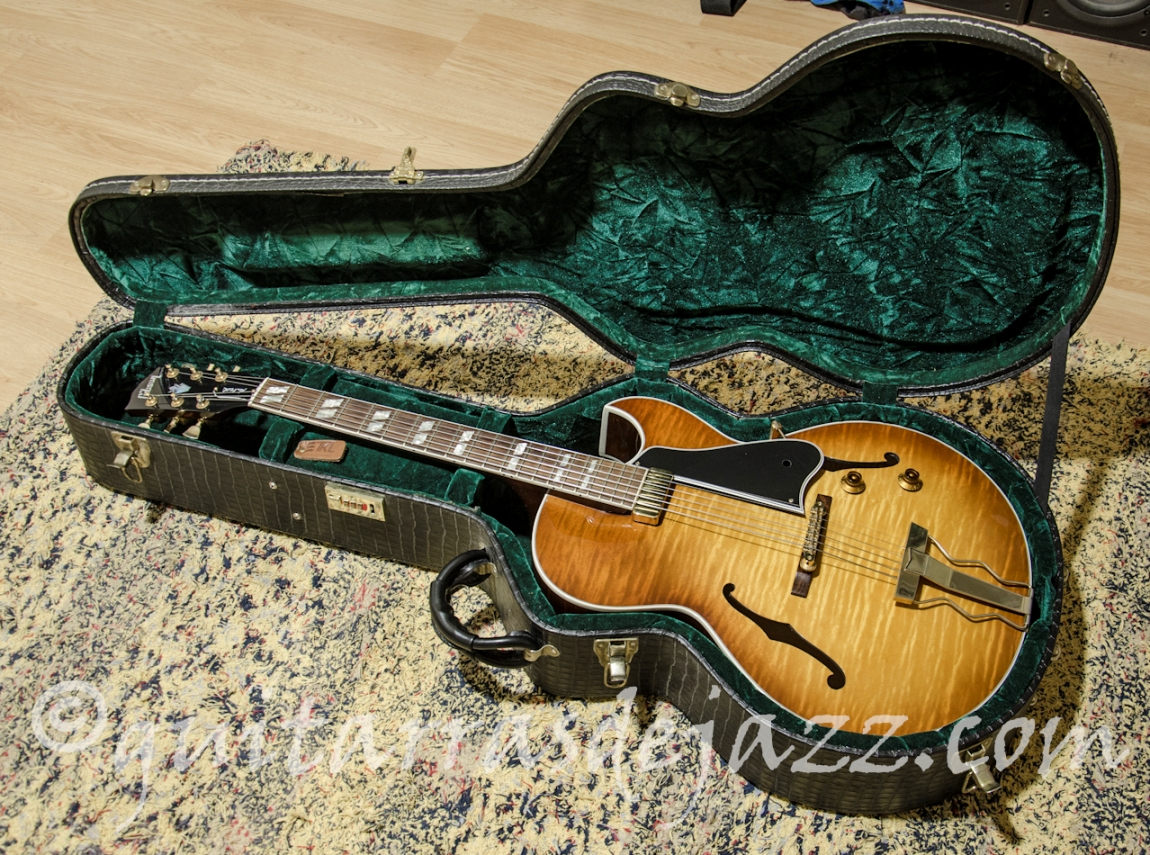 Guitarra en el estuche