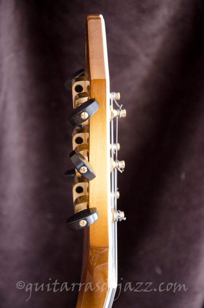 16.- Fender D'Aquisto
